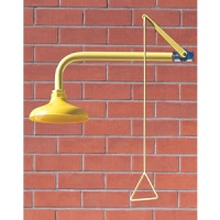 Arboles Emergency Drench Shower - Wall Mounted