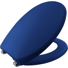 Bemis Care Visual Assist Toilet Seat - Blue